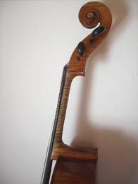 Guarnieri cello reddish brown with golden primer, hand varnished with shellac technical alcohol