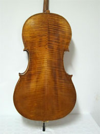 Andrea Amati cello chestnut yellow over golden primer, hand varnished with shellac technical alcohol